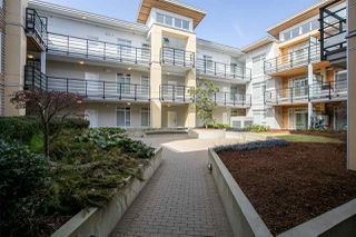 Photo 16: 223 5248 GRIMMER Street in Burnaby: Metrotown Condo for sale (Burnaby South)  : MLS®# R2260300