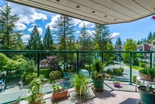 "Photo 22: 301 3680 BANFF Court in North Vancouver: Northlands Condo for sale in ""Parkgate Manor"" : MLS®# R2274448"