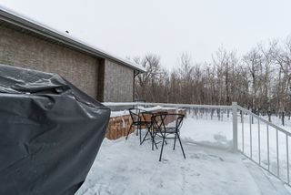 Photo 23: 7 River Valley Drive in Winnipeg: Royalwood Residential for sale (2J)  : MLS®# 1903613