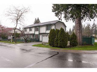 "Photo 18: 20891 94B Avenue in Langley: Walnut Grove House for sale in ""Walnut Grove"" : MLS®# R2358211"