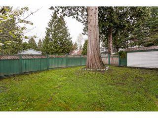 "Photo 19: 20891 94B Avenue in Langley: Walnut Grove House for sale in ""Walnut Grove"" : MLS®# R2358211"