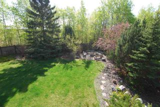 Photo 27: 908 Burley Drive in Edmonton: Zone 14 House for sale : MLS®# E4158075