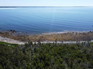 Main Photo: 1179 Stoney Island Road in Stoney Island: 407-Shelburne County Vacant Land for sale (South Shore)  : MLS®# 202010495