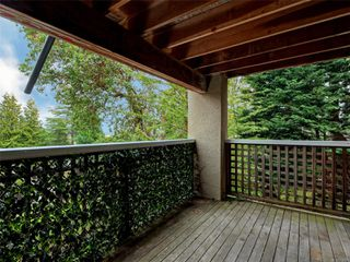 Photo 24: 309 Masters Rd in : Vi Fairfield West House for sale (Victoria)  : MLS®# 858425