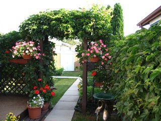 Photo 10: 190 DEVONSHIRE Drive in WINNIPEG: Transcona Residential for sale (North East Winnipeg)  : MLS®# 1110850