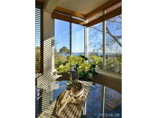 Photo 11: 105 1312 Beach Dr in VICTORIA: OB South Oak Bay Condo for sale (Oak Bay)  : MLS®# 717266