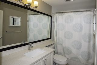 """Photo 13: 3 12351 NO 2 Road in Richmond: Steveston South Townhouse for sale in """"South Pointe Cove"""" : MLS®# R2077351"""