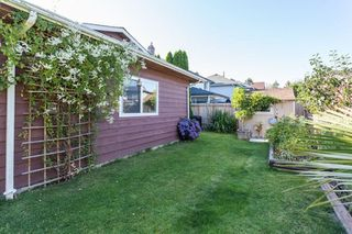 Photo 20: 4980 55B Street in Delta: Hawthorne House for sale (Ladner)  : MLS®# R2118579