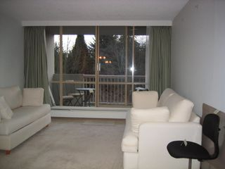Photo 1: 408 2012 Fullerton Ave in North Vancouver: Home for sale : MLS®# V6383082