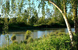 "Photo 3: 111 4955 RIVER Road in Delta: Neilsen Grove Condo for sale in ""Shorewalk"" (Ladner)  : MLS®# R2150658"
