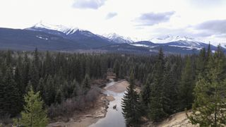 Photo 6: 1125 N North Highway 5 in valemount: Valemount - Town Land Commercial for sale (Out of Town)  : MLS®# C8012281
