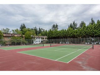 Photo 2: 207 7144 133B Street in Surrey: West Newton Townhouse for sale : MLS®# R2187497