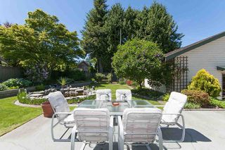 Photo 15: 379 54TH STREET in Tsawwassen: Pebble Hill House for sale : MLS®# R2171453