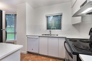 Photo 11: R2226118 - 206-9633 Manchester Dr, Burnaby Condo