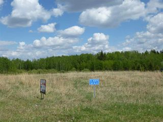 Main Photo: #53 242075 Twp Rd 472: Rural Wetaskiwin County Rural Land/Vacant Lot for sale : MLS®# E4096062