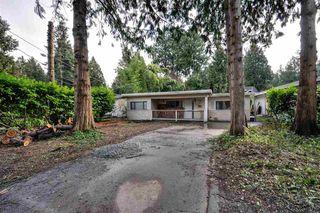 Photo 4: 1444 ENDERBY Avenue in Delta: Beach Grove House for sale (Tsawwassen)  : MLS®# R2240345