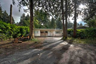 Photo 3: 1444 ENDERBY Avenue in Delta: Beach Grove House for sale (Tsawwassen)  : MLS®# R2240345