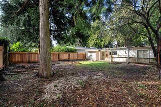 Photo 15: 1444 ENDERBY Avenue in Delta: Beach Grove House for sale (Tsawwassen)  : MLS®# R2240345