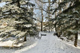 Photo 36: 56 MACEWAN GLEN Drive NW in Calgary: MacEwan Glen House for sale : MLS®# C4173721