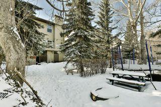 Photo 37: 56 MACEWAN GLEN Drive NW in Calgary: MacEwan Glen House for sale : MLS®# C4173721