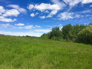 Main Photo: 215 50450 Range Road 233: Rural Leduc County Rural Land/Vacant Lot for sale : MLS®# E4118668