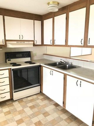 """Photo 5: 145 1830 MAMQUAM Road in Squamish: Garibaldi Estates Manufactured Home for sale in """"Timbertown"""" : MLS®# R2286884"""