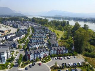 """Photo 20: 45 2332 RANGER Lane in Port Coquitlam: Riverwood Townhouse for sale in """"FREMONT BLUE"""" : MLS®# R2287167"""