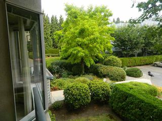 "Photo 16: 227 2700 MCCALLUM Road in Abbotsford: Central Abbotsford Condo for sale in ""THE SEASONS"" : MLS®# R2294385"