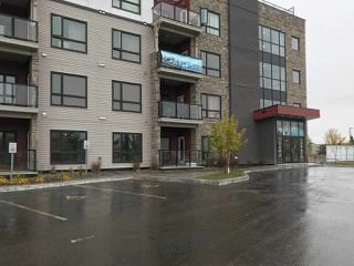 Main Photo: 416 12804 140 Avenue in Edmonton: Zone 27 Condo for sale : MLS®# E4131167