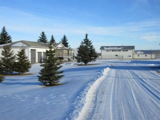 Photo 23: 57517 RR 220: Rural Sturgeon County House for sale : MLS®# E4136175
