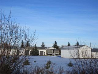 Photo 24: 57517 RR 220: Rural Sturgeon County House for sale : MLS®# E4136175