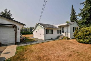 Photo 11: 4689 238 Street in Langley: Salmon River House for sale : MLS®# R2327028
