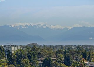 Photo 34: 860 Rainbow Cres in VICTORIA: SE High Quadra Single Family Detached for sale (Saanich East)  : MLS®# 804303