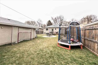 Photo 29: 8744 81 Ave in Edmonton: Zone 17 House for sale : MLS®# E4155997