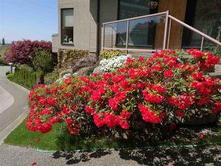 """Photo 17: 5495 WEST VISTA Court in West Vancouver: Upper Caulfeild House for sale in """"UPPER CAULFEILD"""" : MLS®# R2376680"""