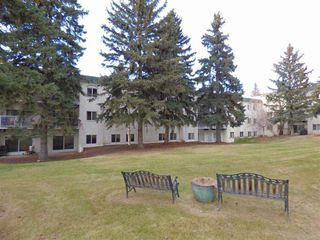 Photo 3: 305 5730 RIVERBEND Road in Edmonton: Zone 14 Condo for sale : MLS®# E4198995