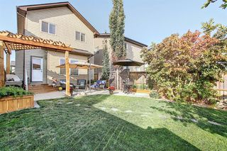 Photo 35: 90 WALDEN Manor SE in Calgary: Walden Detached for sale : MLS®# A1035686
