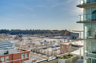 Photo 35: 905 1122 3 Street SE in Calgary: Beltline Apartment for sale : MLS®# A1050629