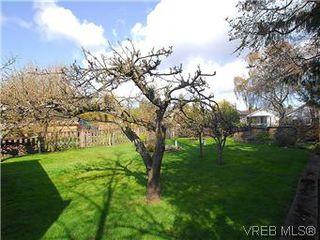 Photo 20: 2034 Haultain Street in VICTORIA: OB Henderson Single Family Detached for sale (Oak Bay)  : MLS®# 292042