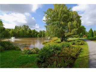 """Main Photo: 35 9339 ALBERTA Road in Richmond: McLennan North Condo for sale in """"TRELLAINE"""""""