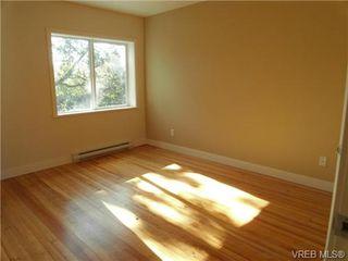 Photo 8: 610 Manchester Rd in VICTORIA: Vi Burnside Half Duplex for sale (Victoria)  : MLS®# 666380