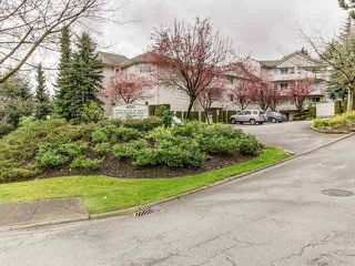 "Photo 14: 401 450 BROMLEY Street in Coquitlam: Coquitlam East Condo for sale in ""BROMELY"" : MLS®# V1114021"