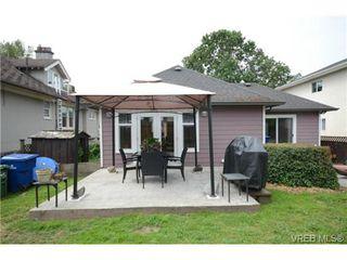 Photo 17: 554 Sumas St in VICTORIA: Vi Burnside Single Family Detached for sale (Victoria)  : MLS®# 703176