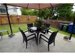Photo 18: 554 Sumas St in VICTORIA: Vi Burnside Single Family Detached for sale (Victoria)  : MLS®# 703176