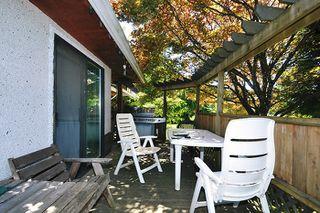 "Photo 9: 11144 PRINCESS Street in Maple Ridge: Southwest Maple Ridge House for sale in ""HAMMOND"" : MLS®# V1130381"