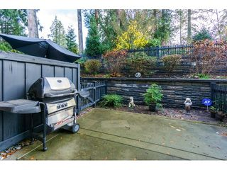"Photo 19: 21 21867 50 Avenue in Langley: Murrayville Townhouse for sale in ""Winchester"" : MLS®# R2009721"