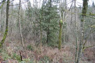 "Photo 1: 32410 CHERRY Avenue in Mission: Mission BC Land for sale in ""West of Cedar"" : MLS®# R2028212"