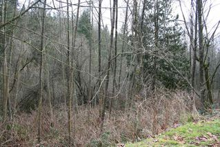 "Photo 2: 32410 CHERRY Avenue in Mission: Mission BC Land for sale in ""West of Cedar"" : MLS®# R2028212"