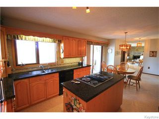 Photo 10: 1145 Schapansky Road in Ile Des Chenes: Residential for sale : MLS®# 1610449
