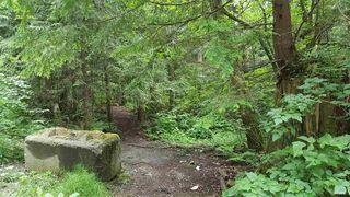 "Photo 6: 14.65AC BARRETT STREET in Mission: Mission BC Land for sale in ""Silverhill"" : MLS®# R2079511"